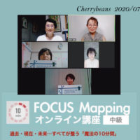 FOCUS Mapping